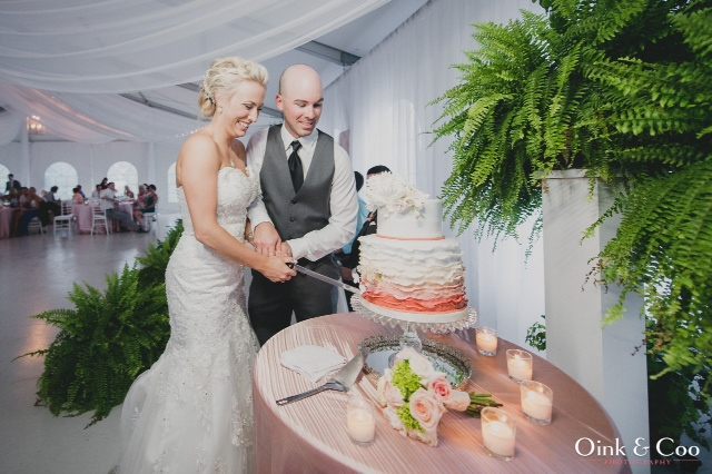 cake cutting wide